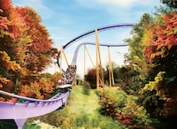 1-Day Admission for One to Busch Gardens Williamsburg including Howl-O-Scream