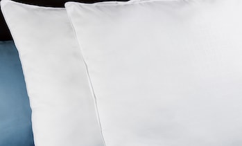 Hypoallergenic Overfilled Down Alternative Euro Pillow (2-Pack)